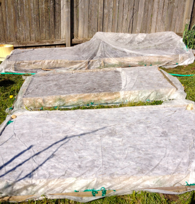 Floating row covers keep my freshly planted beds from becoming a giant kitty litter bo