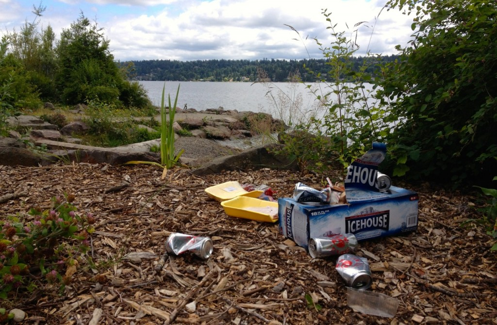 Trashing our parks
